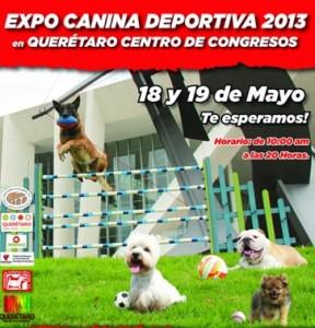 Expo Canina Deportiva 2013